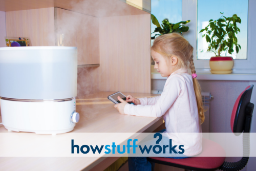How Often Should You Clean Your Humidifier?